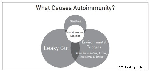 what causes autoimmunity